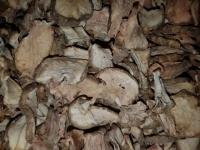 Topinambur-Knolle Scheiben ab 100 g